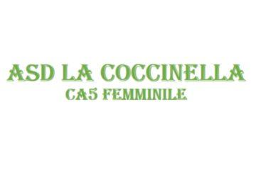 C – Tante conferme e nuovi arrivi è iniziata la nuova stagione per La Coccinella